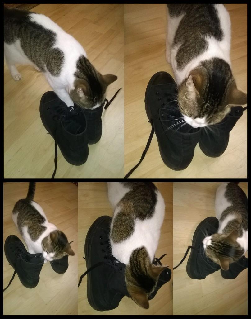 Nimeoh & Schuhe